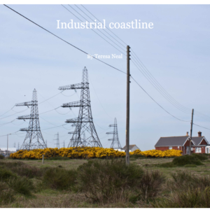 Store|Industrial Coastline Book by Teresa Neal.©Teresa Neal all rights reserved.