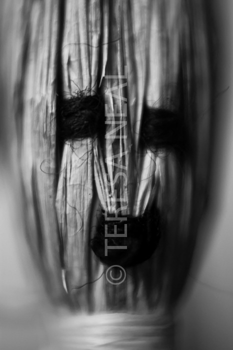 Giclee Prints Headstock Teresa Neal