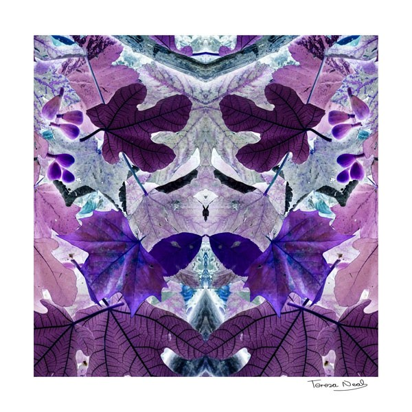 Lilac Leaves silk cotton scarf
